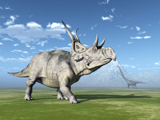 The Dinosaurs Diabloceratops and Mamenchisaurus