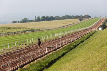 Race Horse Rider Training
