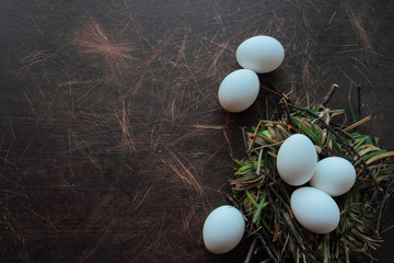 Eggs in a nest of grass and hay. Eco eggs concept