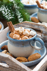 spicy cocoa with marshmallows, cinnamon and cookies