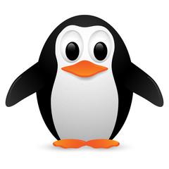 Penguin. Vector illustration.