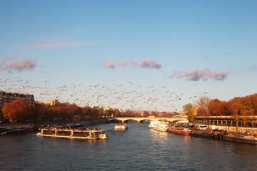 Seine river, Paris, France.