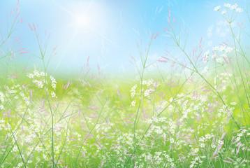 Spring floral  background.