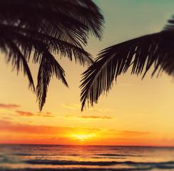 Foto op Aluminium Zee zonsondergang Tropical beach