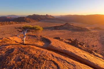 Staande foto Zuid Afrika Golden Sunlight