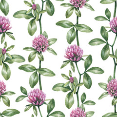 Watercolor clover flower. Seamless pattern