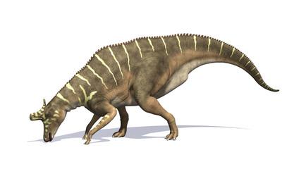 Lambeosaurus Dinosaur Feeding