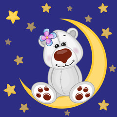 Cute Polar Bear on the moon