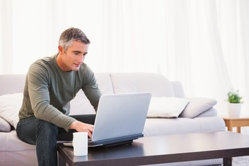 Cheerful man sitting on couch using laptop