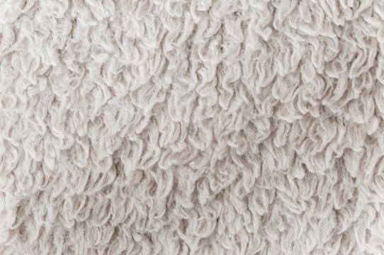 Texture of a white carpet