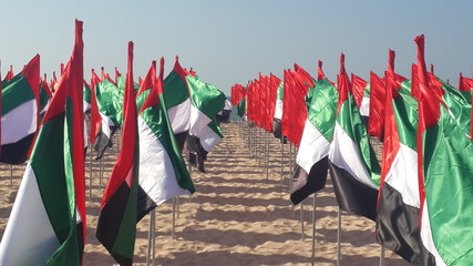 Beach with flags of u.a.e.