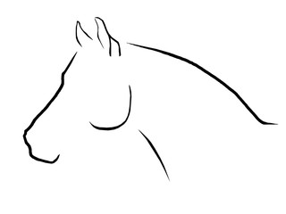 Pferdekopf Trakehner
