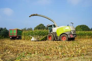 Fototapete - Maishäcksler und Transportfahrzeuge bei der Maisernte