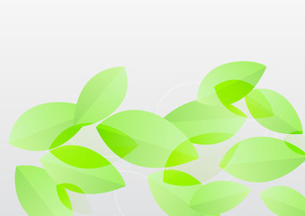 bright fresh green flying leaves soft abstract background