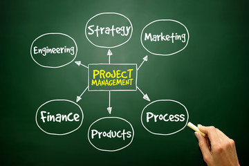 Project management process mind map, business concept