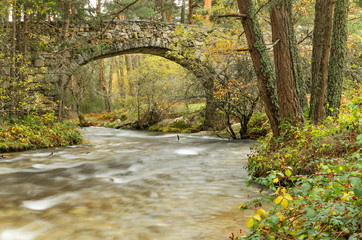 Ancient Bridge and river in the forest in Segovia, Spain.