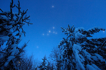 Wall Mural - Beautiful night winter landscape with the stars
