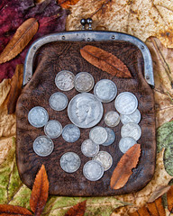 purse with silver