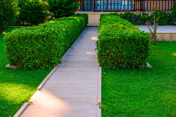 path leading to the house and green lawn