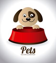 Pets design,vector illustration.