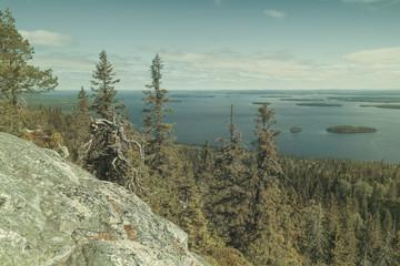 Fototapete - View from the Koli to lake Pielinen