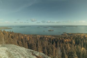 Fototapete - Vintage view from Koli to lake Pielinen