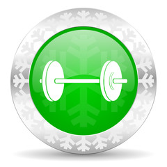 fitness green icon, christmas button