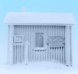 Frozen house.