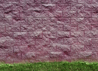 Purple Cinder Block Wall and Grass