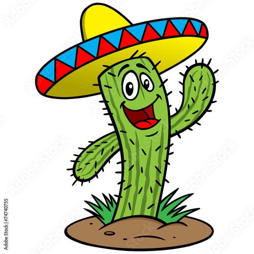 image of christmas cactus flower