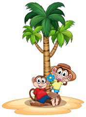 Monkeys and tree