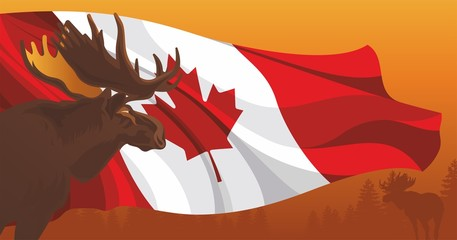 Moose against the flag and nature in Canada