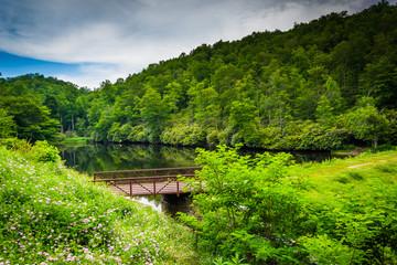 Pond at Julian Price Memorial Park, along the Blue Ridge Parkway