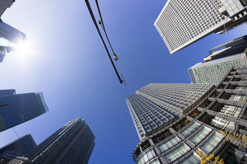 丸ノ内 高層ビル街を見上げる