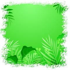 Green leaf tropical frame