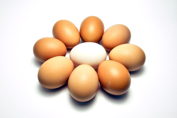 Duck egg laid in the center surrounded by chicken egg
