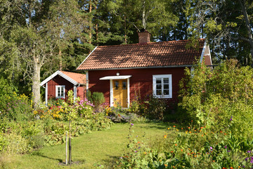 Swedish cottage in summer time