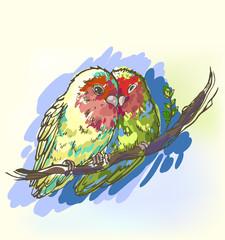 Romantic image of a pair of parrots lovebirds, color sketch