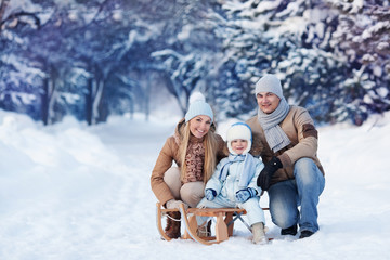 Portrait of Young family in a winter park