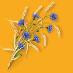 Cornflowers and wheat ears on orange