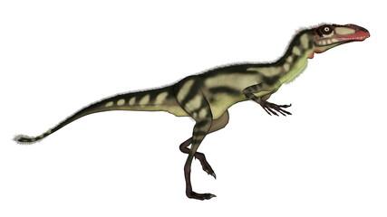 Dilong dinosaur walking - 3D render
