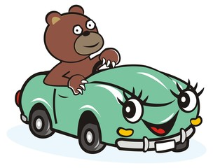 car and bear