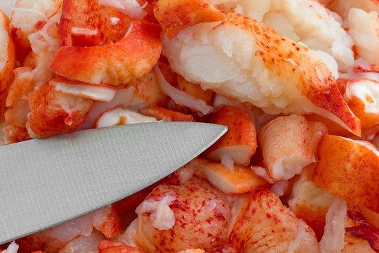Close view of cut lobster meat with a sharp knife