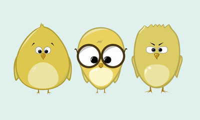 Three different shapes of chick