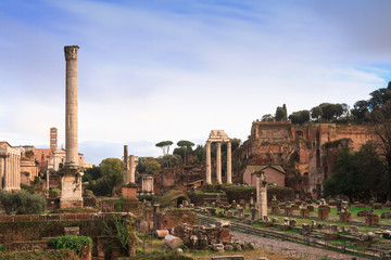 Wall Mural - View over the Forum Romanum