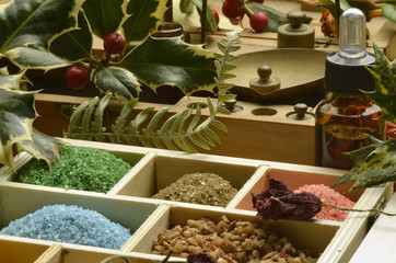 Herbalism Herbología Erboristeria Pflanzenheilkunde Travarstvo