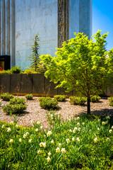 Garden outside the Washington DC Mormon Temple in Kensington, Ma