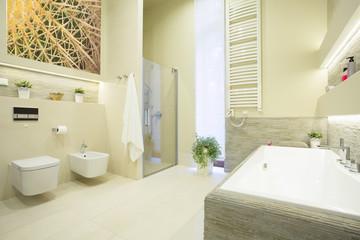Luxury bathroom in pastel colors