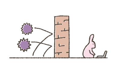 壁とウサギ