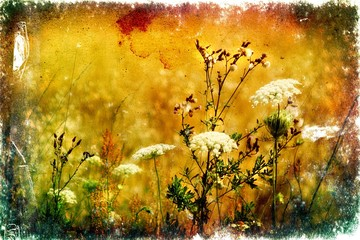 Antique flower floral photography